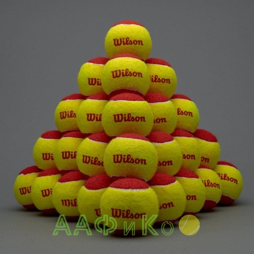 Мячи теннисные Wilson Stalter Red Tball 12 шт. в упак. (WRT137100)