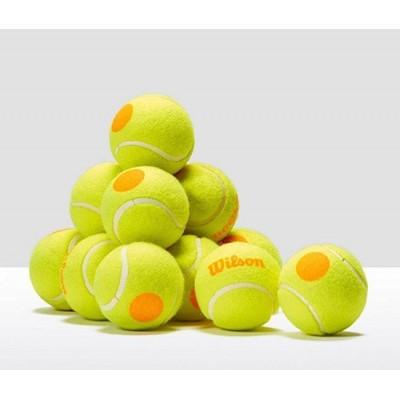 Мячи теннисные Wilson Stalter Orange Tball 12 шт. в упак. (WRT137200)