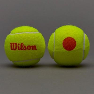 Мячи теннисные Wilson Stalter Orange Tball 3 шт. в упак. (WRT137300)