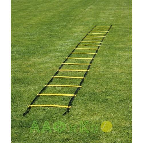 Лестница координационная Coordination Ladder