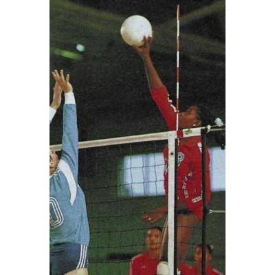 Волейбольная антенна Volleyball Antenna